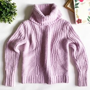 Banana Republic Lavender Chunky Knit Sweater
